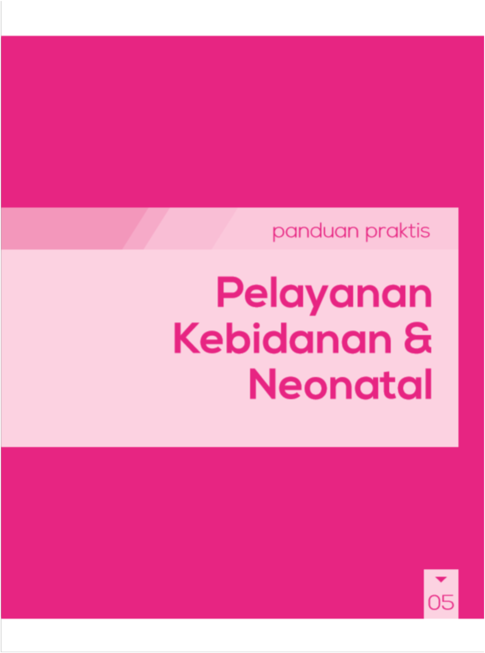 Panduan Praktis Pelayanan Kebidanan Dan Neonatal